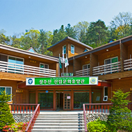 Mt.Seongjusan Natural Forest [photo]